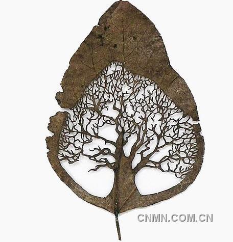 树叶雕刻:leaf art