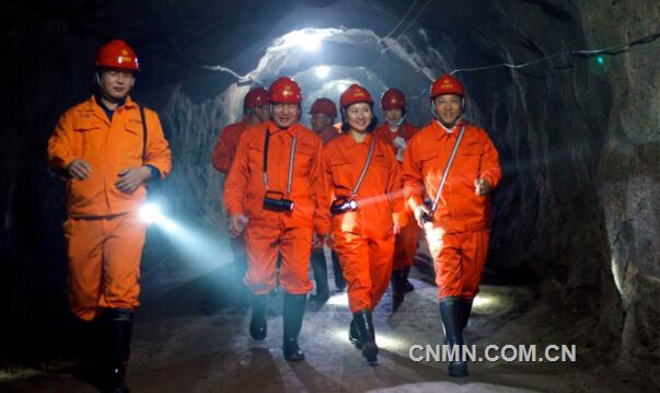 大冶有色集团董事长,党委书记张麟与蒙古国admas矿业