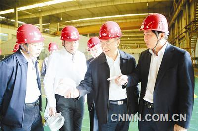 坚定信心 稳定发展——访铜陵有色金属集团董事长杨军