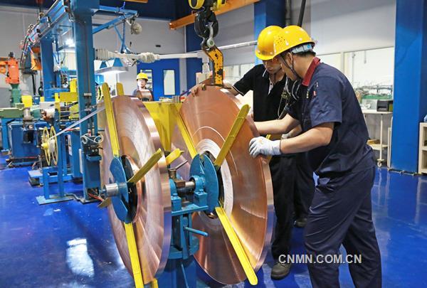 高端异型铜带产品投入市场
