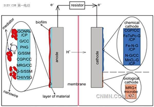 石墨烯是一种二维的碳原子结构
