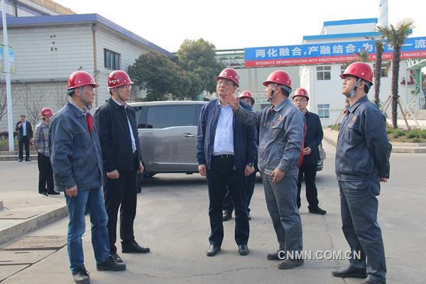 朱立凡到张家港铜业调研指出:要进一步提升企业环保综合治理水平