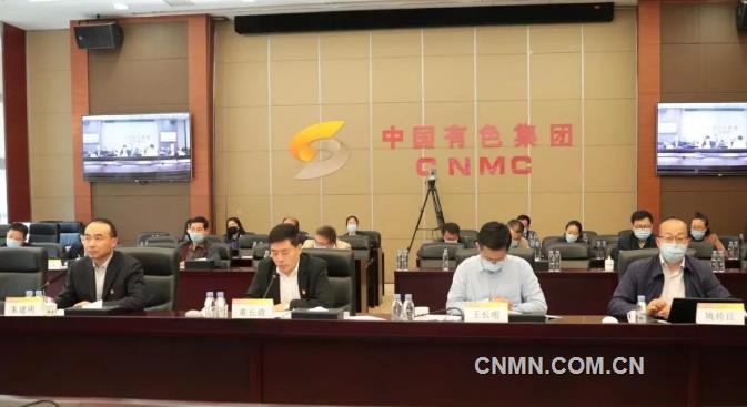 """中国有色集团召开党史学习教育""""我为群众办实事""""实践活动推进会"""