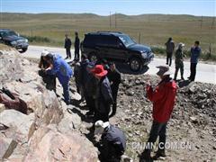 青海湖周边1∶5万区域地质矿产调查项目成果喜人