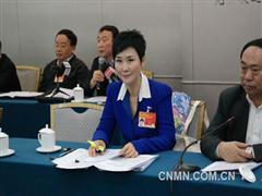 全国政协委员、中国电力国际有限公司董事长李小琳参加经济界别小组讨论,她提出了推动海上风电发展等提案,并接受 了记者采访