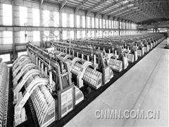 新晋铝业巨头——魏桥创业集团的创新发展模式