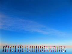 """净化""""天空之镜""""乌尤尼盐湖的环境,以光伏电力将废塑料变油"""