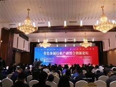 首届有色金属行业产融结合创新论坛在京举行