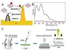 青岛能源所在锂金属电池研究中取得进展