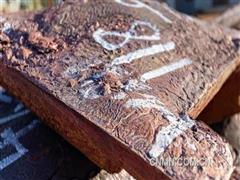 卡莫阿-卡库拉铜矿取得铜精矿出口许可