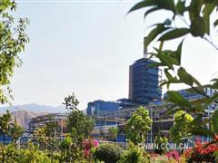 凉山矿业绿色冶炼助推绿色发展