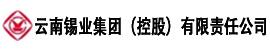 云南锡业集团(控股)有限责任公司